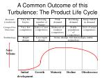 a common outcome of this turbulence the product life cycle