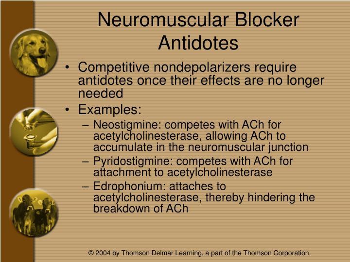 Neuromuscular Blocker Antidotes