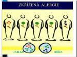 zk en alergie