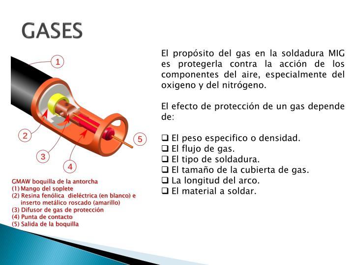 GASES