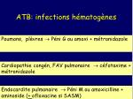 atb infections h matog nes