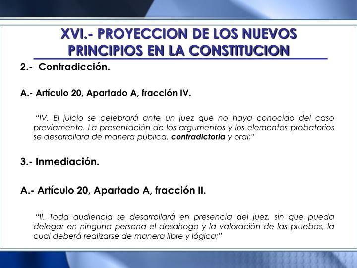 XVI.- PROYECCION DE LOS NUEVOS PRINCIPIOS EN LA CONSTITUCION