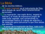 la biblia17