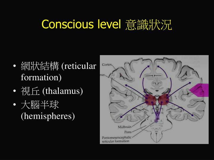 Conscious level