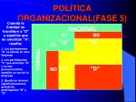 pol tica organizacional fase 5