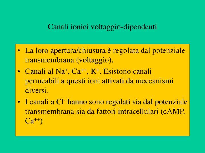 Canali ionici voltaggio-dipendenti
