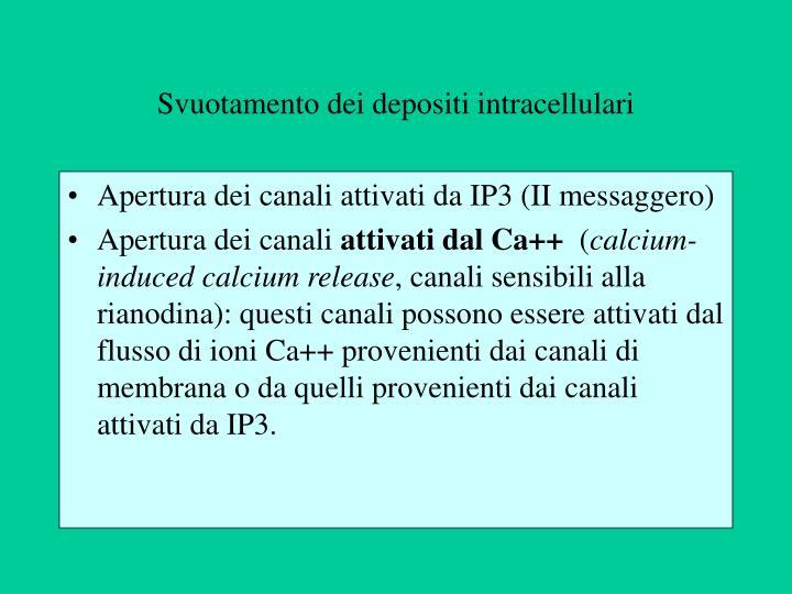 Svuotamento dei depositi intracellulari