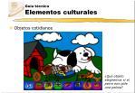 gu a t cnica elementos culturales2