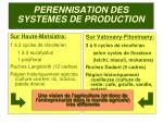 perennisation des systemes de production