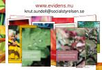 www evidens nu knut sundell@socialstyrelsen se