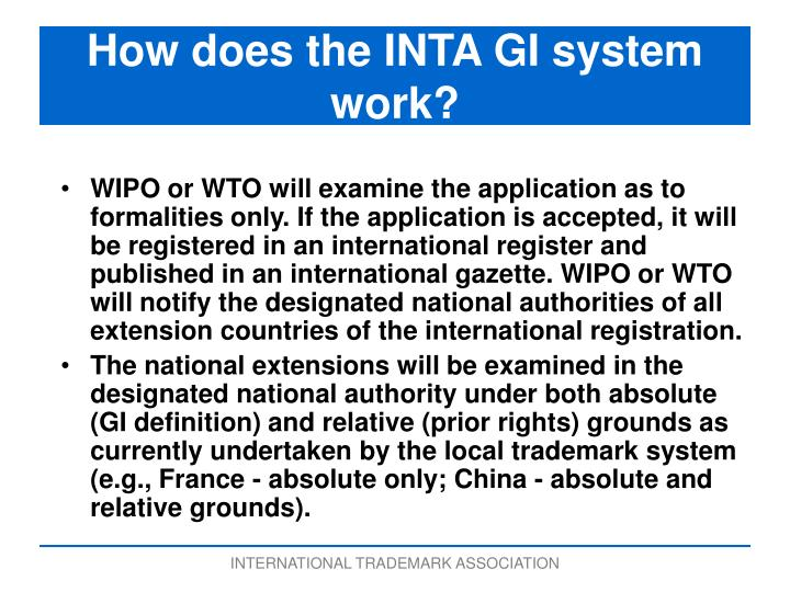 How does the INTA GI system work?