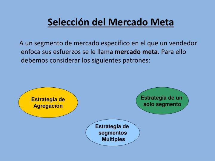 Selección del Mercado Meta