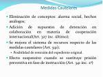 medidas cautelares1