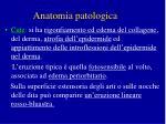 anatomia patologica1
