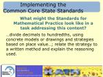 implementing the common core state standards1