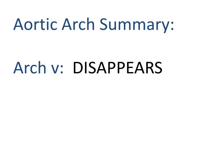 Aortic Arch Summary: