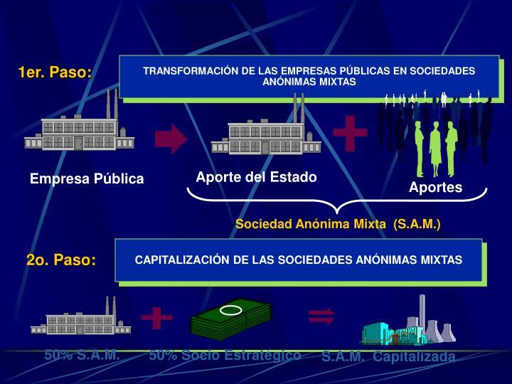 TRANSFORMACIÓN DE LAS EMPRESAS PÚBLICAS EN SOCIEDADES ANÓNIMAS MIXTAS