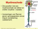 myelineschede