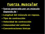 fuerza muscular1