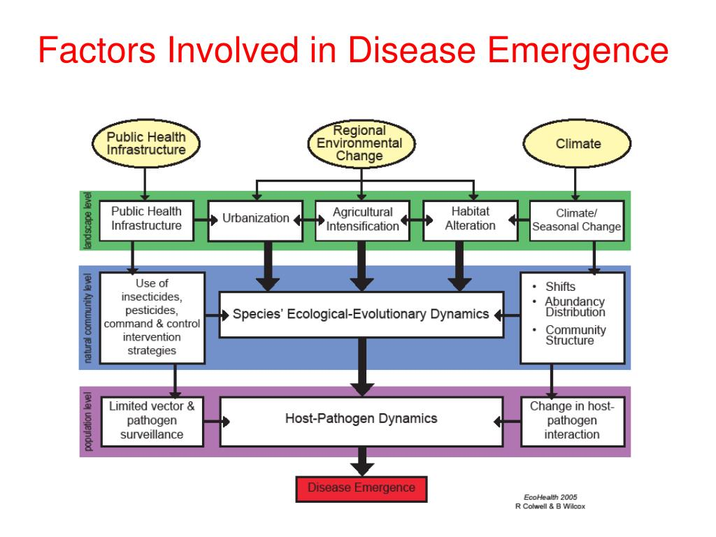 Factors Involved in Disease Emergence