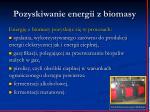 pozyskiwanie energii z biomasy