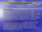 principales perfiles profesionales de los titulados