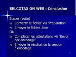 belcotax on web conclusion1