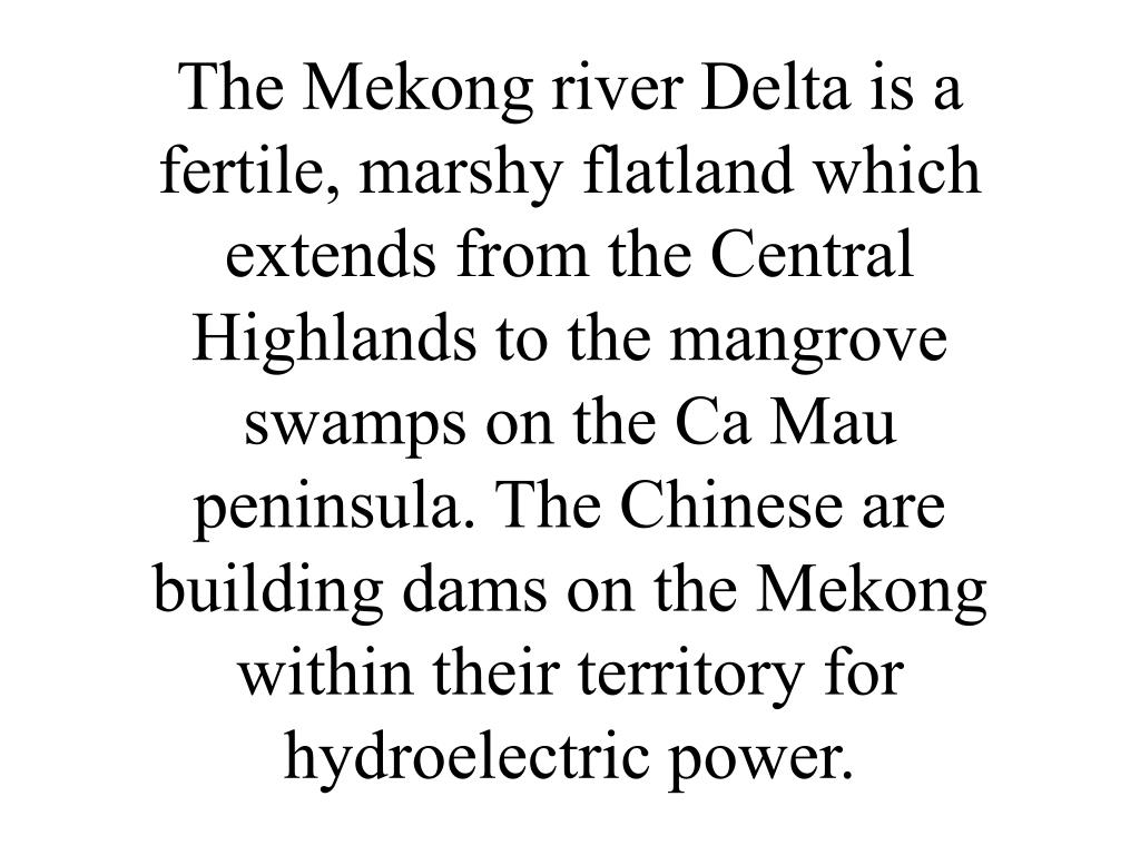 The Mekong river Delta is a fertile, marshy flatland which extends from the Central Highlands to the mangrove swamps on the Ca Mau peninsula. The Chinese are building dams on the Mekong within their territory for hydroelectric power.
