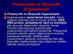 prokaryotik ve karyotik organizmalar