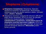 sitoplazma cytoplasma