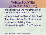 thrombocytes blood platelets