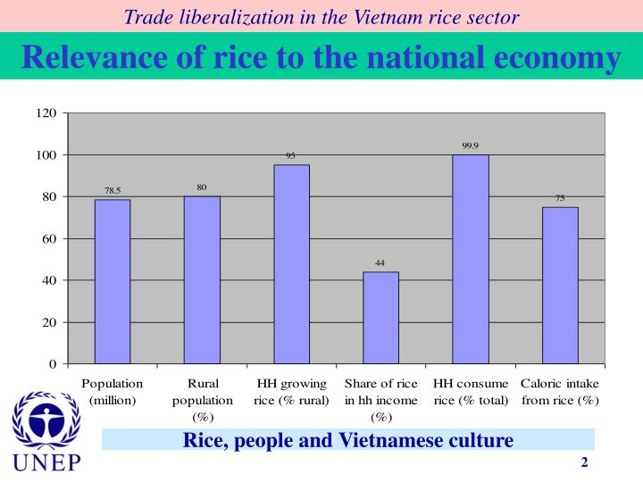 Rice people and vietnamese culture