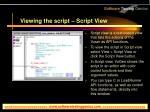 viewing the script script view