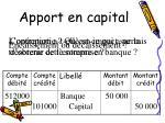 apport en capital