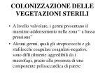 colonizzazione delle vegetazioni sterili
