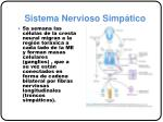 sistema nervioso simp tico