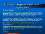 principi di responsabilizzazione e cooperazione