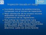 inspecci n basada en riesgo
