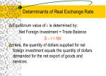 determinants of real exchange rate