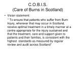 c o b i s care of burns in scotland