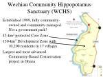 wechiau community hippopotamus sanctuary wchs