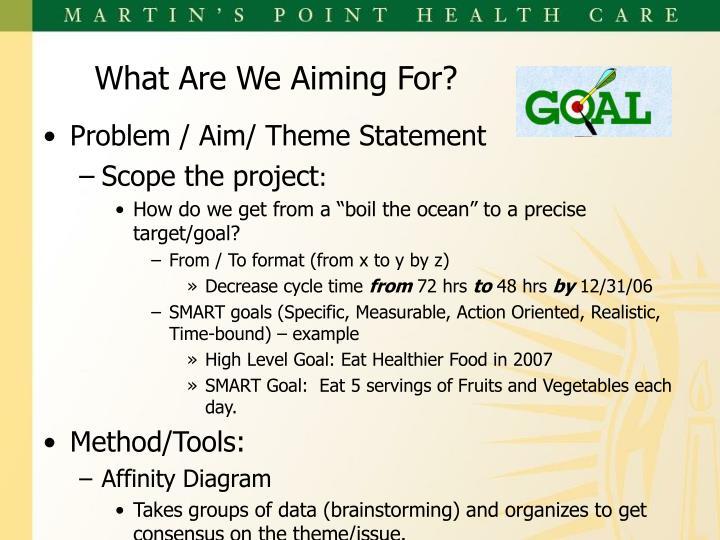 Problem / Aim/ Theme Statement