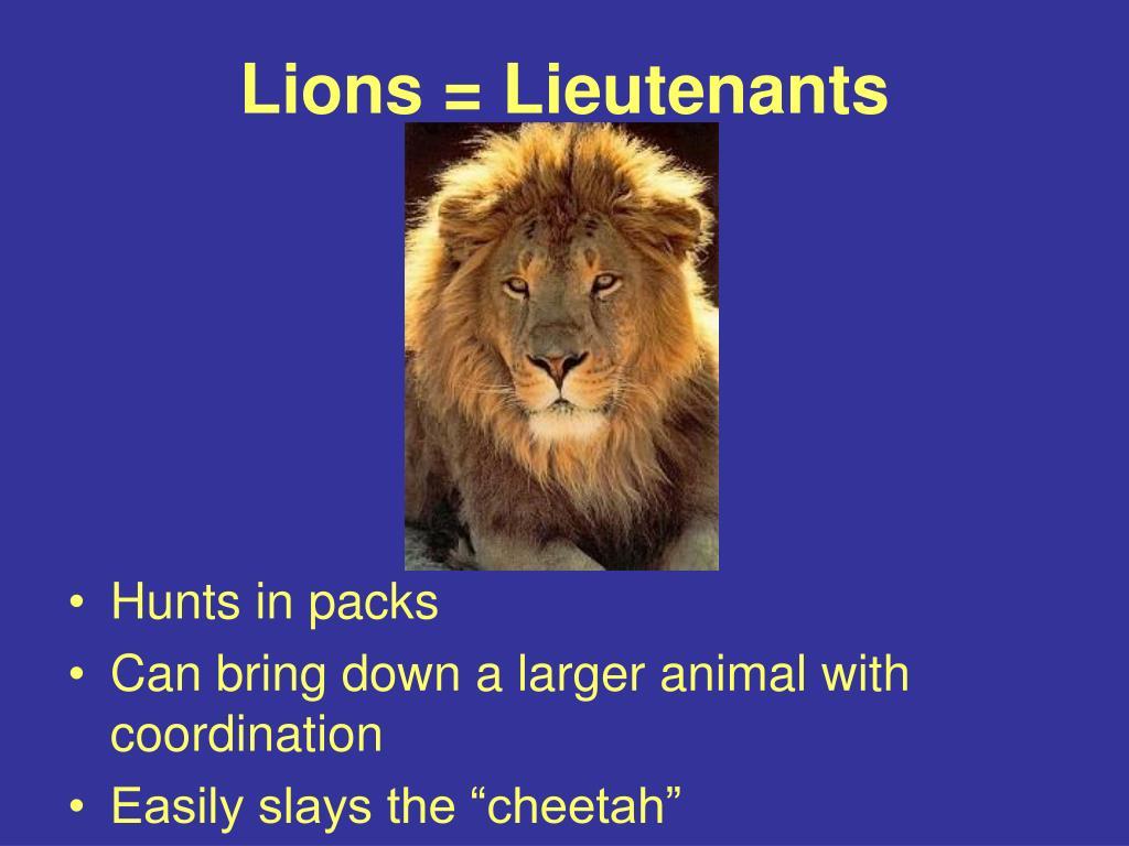 Lions = Lieutenants