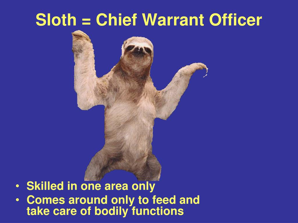Sloth = Chief Warrant Officer