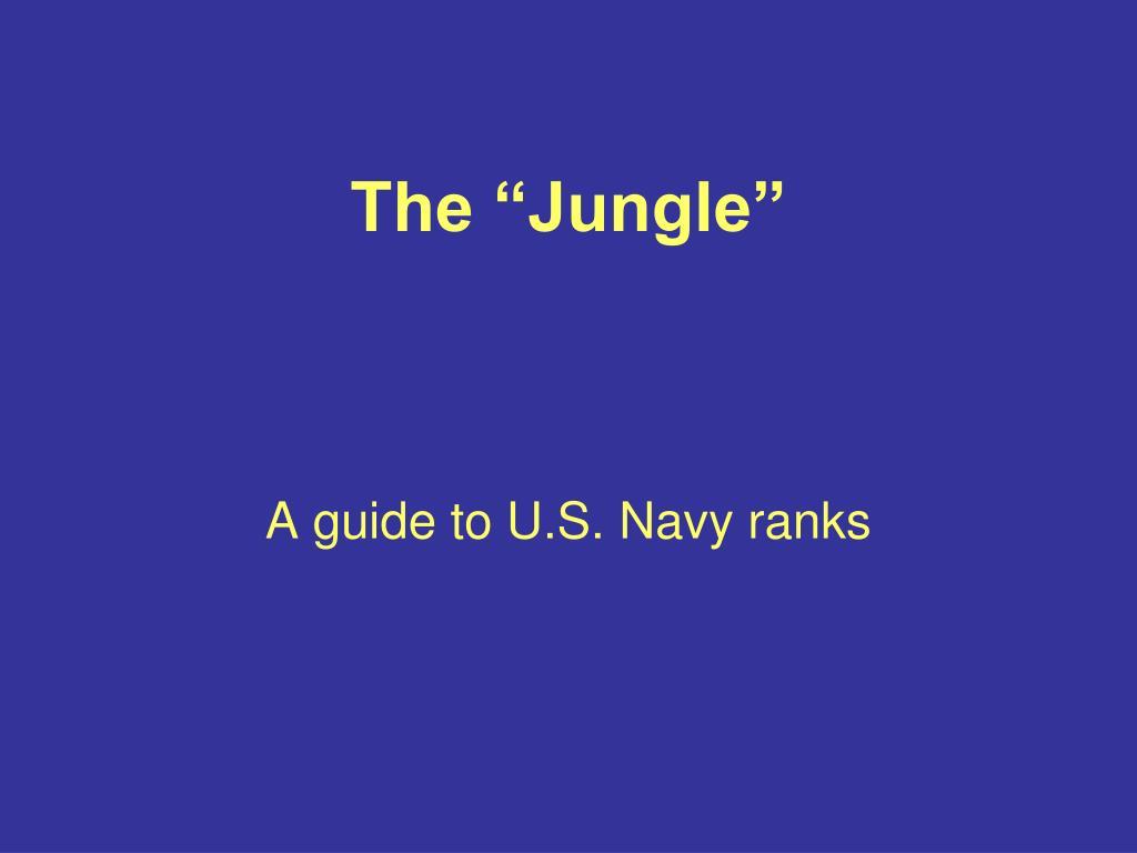 """The """"Jungle"""""""