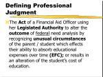 defining professional judgment