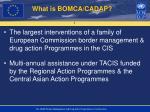 what is bomca cadap