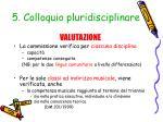 5 colloquio pluridisciplinare1