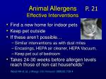 animal allergens effective interventions