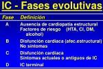 ic fases evolutivas